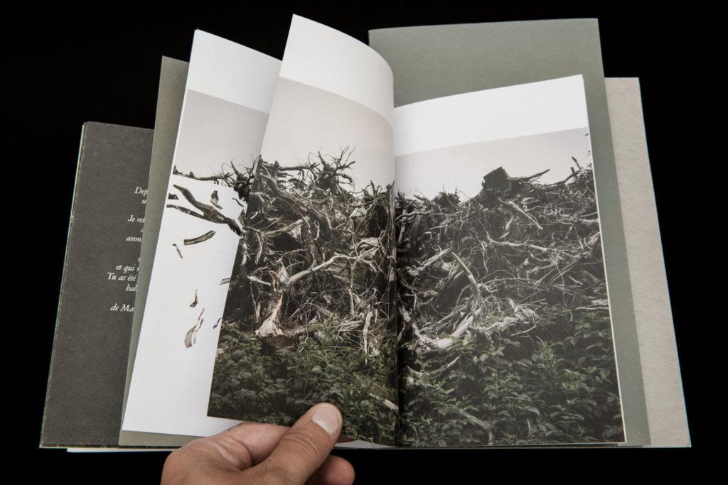Une Forêt - le livre